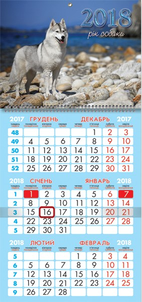 Календарь настенный кварт. спираль 25*52см  Собака возле моря