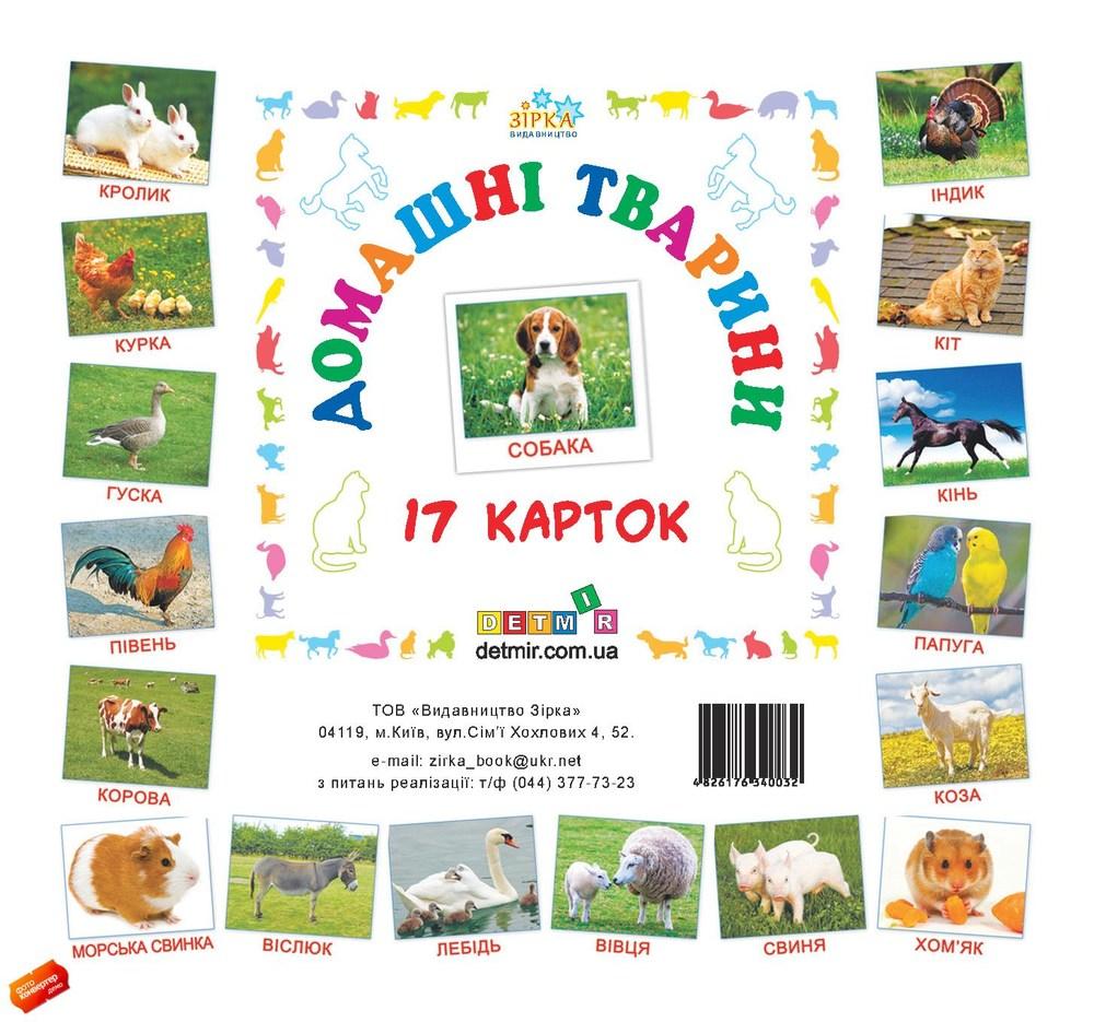 Карточки мини Домашние животные (110х110 мм)