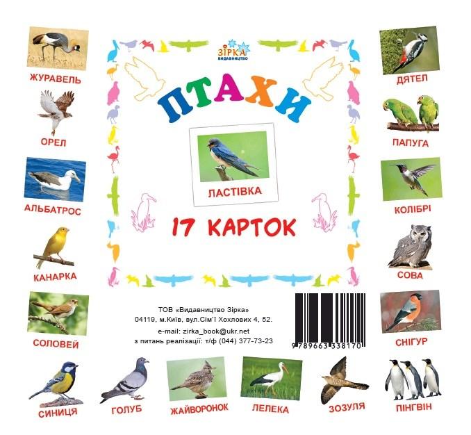 Карточки мини Птицы (110х110 мм)
