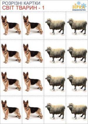 Разрезные карточки Мир Животных,комплект