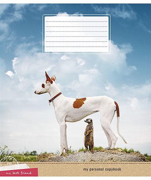 Тетрадь 18л, клетка, 2062 Cool Dogs, Star